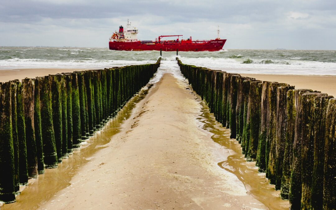 To reach net zero, the shipping sector needs political support